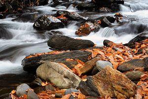 Colorful River