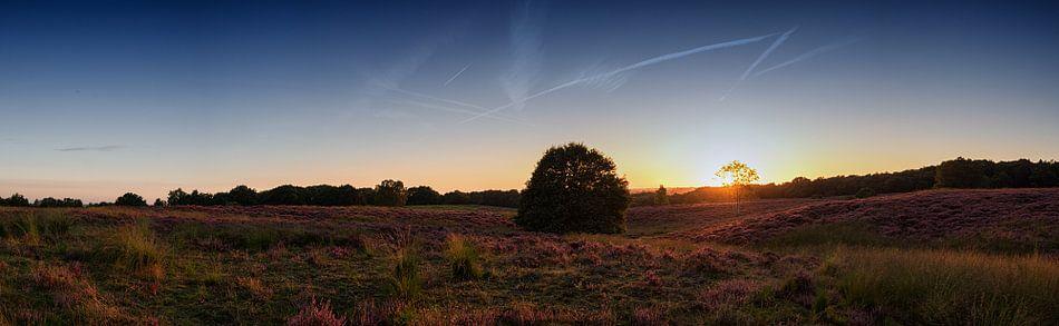 Mookerheide (panorama) van Lex Schulte