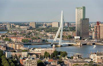 Rotterdam skyline von