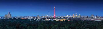 Berlijnse skyline van Frank Herrmann