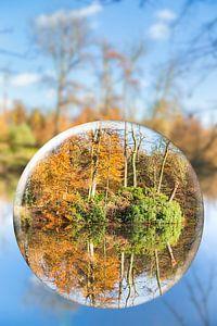 Glazen bol weerspiegeld bos in herfst seizoen van