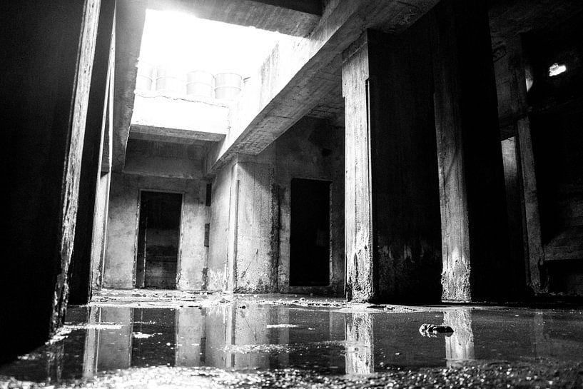 De donkere kelders van elwin flik