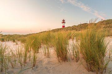 Dünenlandschaft am Leuchtturm List-Ost auf Sylt von Christian Müringer