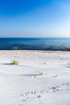 Eenzaam strand aan de Oostzeekust van Sascha Kilmer
