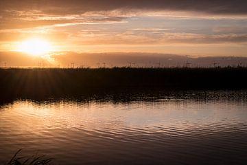 Polder ven in vroeg zonlicht van Pascal Raymond Dorland