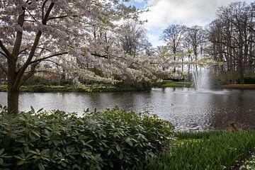 Landschaft mit Blüte von Anouk Snijders