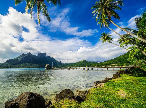 Van de gebaande paden op Bora Bora