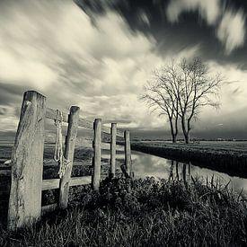 Herfst in de Alblasserwaard van Peter Halma