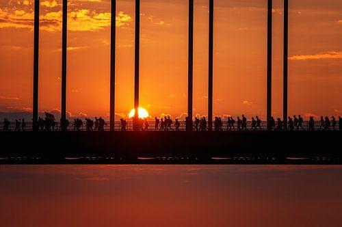 I'm Walking on Sunshine van Sander Peters Fotografie