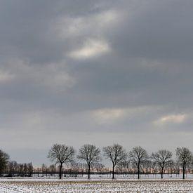 Een besneeuwd landschap onder een winterse wolkenlucht van Erna Böhre