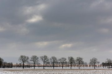 Een besneeuwd landschap onder een winterse wolkenlucht