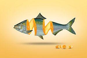 Gespleten vis en sinaasappel - manipulatie van