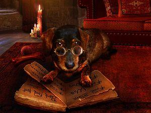 Het boek van hondenpraat