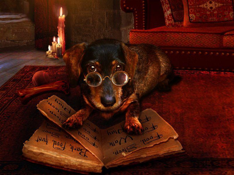 Het boek van hondenpraat van Babette van den Berg