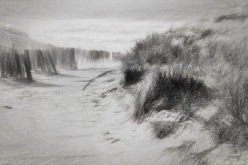 strandopgang met een flinke storm van eric van der eijk