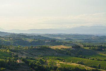 Het uitzicht vanuit  San Gimignano, Toscane in de avondzon van Michel Geluk