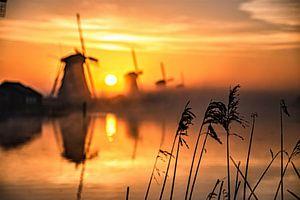 kinderdijk sunrise zon mist reflectie van Marco van de Meeberg
