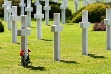 Herinnering aan de gevallen bevrijders van Robbert De Reus
