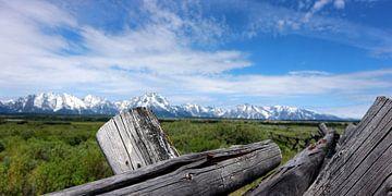 Grand Teton mountains van