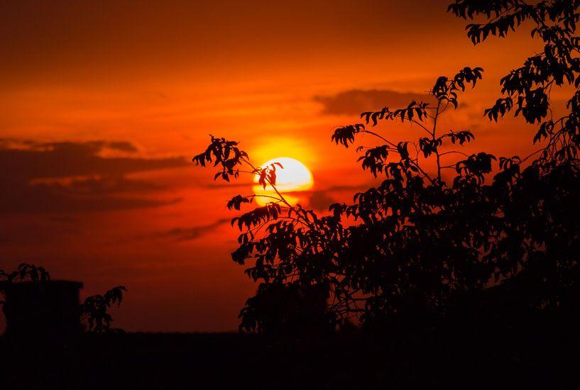 Zonsondergang van Devlin Jacobs