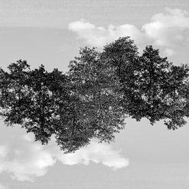 Gespiegelde bomen (2) van Mark Scheper