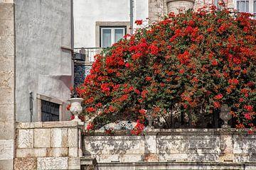 Straatbeeld Lissabon. van Tilly Meijer