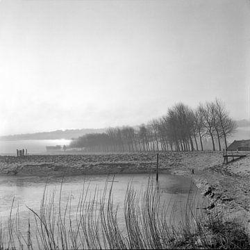 Dordtse Biesbosch sur Dordrecht van Vroeger