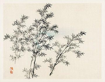 Bamboe door Kōno Bairei (1844-1895). van Studio POPPY