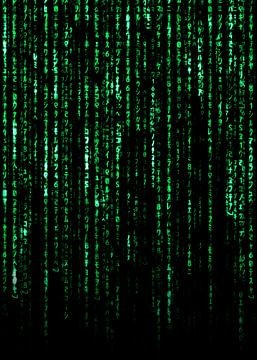 Die Matrix von Nikita Abakumov