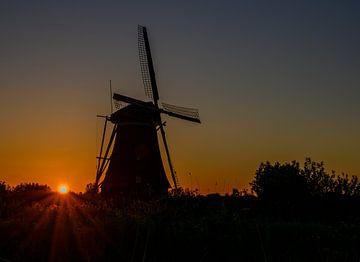 De molens van Kinderdijk
