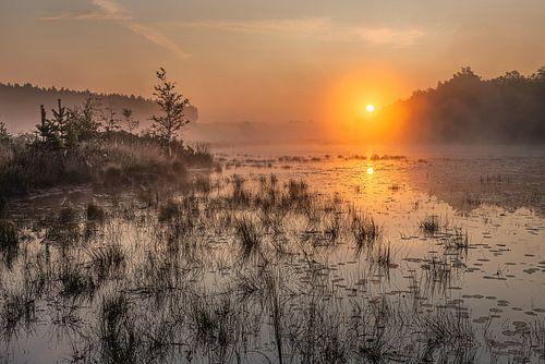 gouden zonsopkomst boven de vijver in de teut te Limburg, Belgie