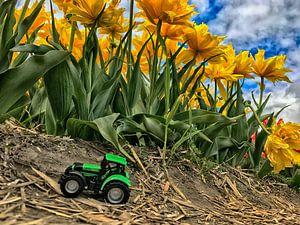 green garden van