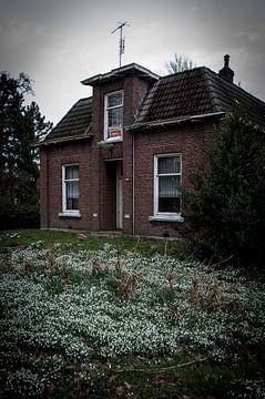 Leegstaand huis von Roel Van Cauwenberghe