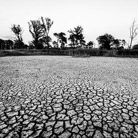 Dürre von Jan Koppelaar