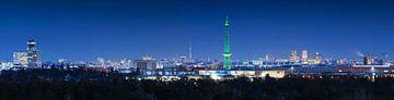 Skyline Berlin Panorama von Frank Herrmann