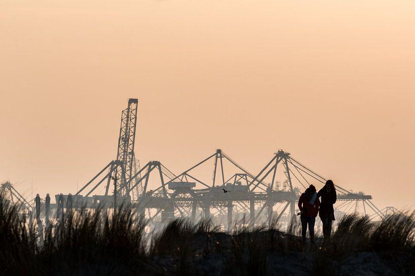 Avondlicht op de Maasvlakte, Hoek van Holland / Rotterdam van Eddy Westdijk