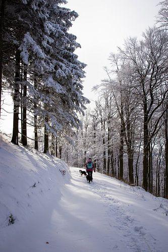 Zonnige sneeuw hike in Duitsland 1