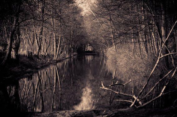 the moat van Jo Beerens