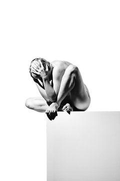 Sehr schöne nackte Frau posiert auf einem grauen Block #4059 von william langeveld