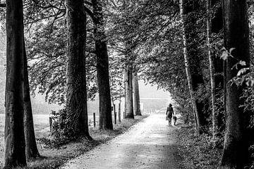 Op wandel in de regen van Tim Briers