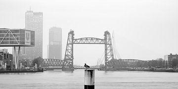 De Hef in Rotterdam von MS Fotografie | Marc van der Stelt