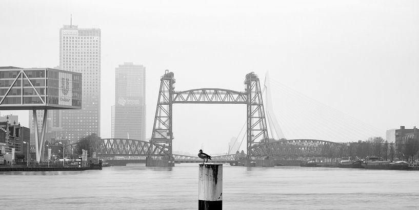 De Hef in Rotterdam van MS Fotografie | Marc van der Stelt