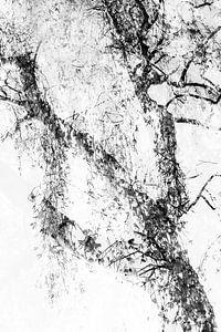 Boom abstract van Ingrid Van Damme fotografie