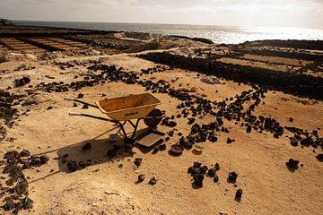 Lanzarote zoutveld van Mirjam de Jonge