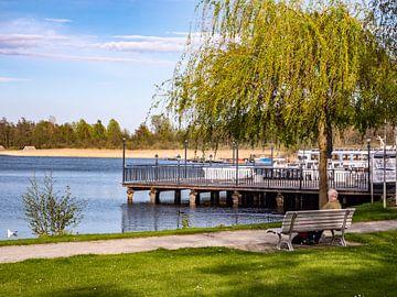 Tijd aan het meer in het Mecklenburgse merengebied van Animaflora PicsStock