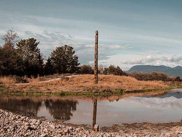 Totempaal weerspiegeld in meer in Vancouver, Canada van Daan Duvillier