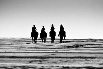 Pferde am Meer von Nederland op Foto