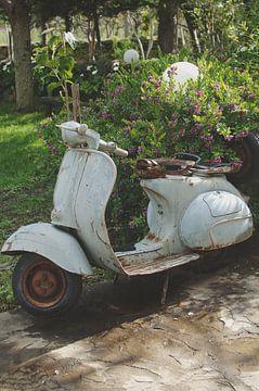 Old Vespa van Marianne Bal