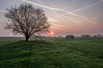 Weiland met boom en schuur bij zonsopkomst 01 von Moetwil en van Dijk - Fotografie