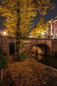 Utrecht herfst 4